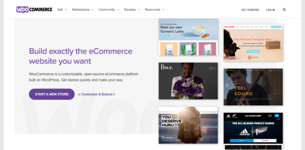 20-best-woocommerce-plugins-for-your-online-store-(2021)