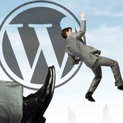 pirated-themes-and-plugins-on-official-wordpress-site