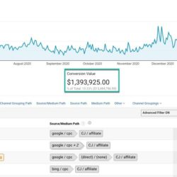 Analytics: What Sources are Stealing Your Paid Revenue Attribution?